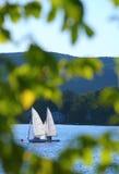 Sailboats quadro pelas folhas imagem de stock