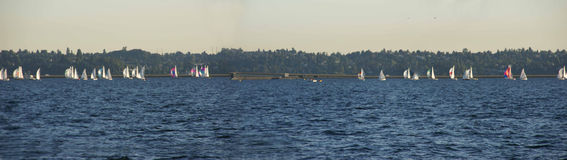 Sailboats racing Stock Photography
