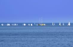 Sailboats regatta Στοκ φωτογραφία με δικαίωμα ελεύθερης χρήσης