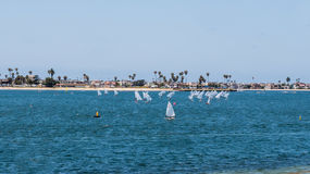 Sailboats. Regatta in a beautiful bay at sunny day Royalty Free Stock Photo