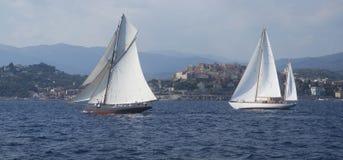 Sailboats Stock Images