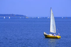Sailboats regatta Royalty Free Stock Photos