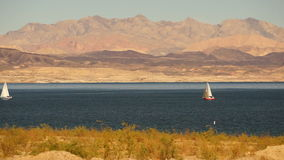 Sailboats Ride Wind Lake Mead Recreation Area Boaters Sail stock video