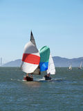 Sailboats running under spinnaker sails on bay Royalty Free Stock Image