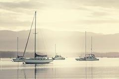Sailboats Sailing on Sea Against Sky Royalty Free Stock Photo