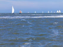 Sailboats sailing on the Wadden Sea Royalty Free Stock Photo