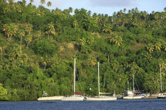 Sailboats in Samana bay Royalty Free Stock Photos