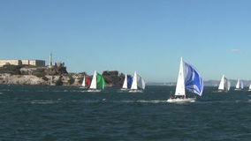 Sailboats in San Francisco Bay stock video