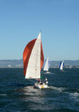Sailboats in the San Francisco Bay Royalty Free Stock Images
