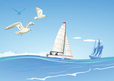 Sailboats and seagulls Stock Images