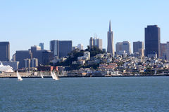 Sailboats and Skyline in San Francisco. Sailboats on San Francisco Bay.  Beautiful skyline in the backdrop with downtown, coit tower, and pier 39 showing Royalty Free Stock Image