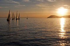 Sailboats in sunset Royalty Free Stock Photos