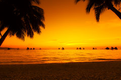 Sailboats at sunset on a tropical sea. Palms on the beach. Silho Royalty Free Stock Images