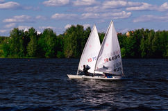Sailboats taking part in a Regatta Royalty Free Stock Image