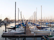 Sailboats tied up in berths in marina Royalty Free Stock Photography