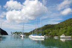 Sailboats in tropical harbor Royalty Free Stock Image