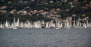 Sailboats and tugboats during a race Royalty Free Stock Image