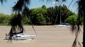 Sailboats. Two white sailboats crossing the river stock footage