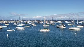 Sailboats and yachts in harbor on sunny California day stock video