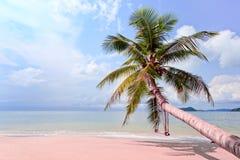 Sailer on beach Stock Photo