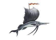 Sailfish Royalty Free Stock Photo