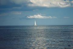 sailfish Fotografia Royalty Free