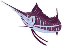 Sailfish Stock Photography