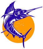 Sailfish Stock Image