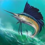 Sailfish no fundo ilustração do vetor