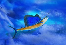 Sailfish with ocean backdrop. A sailfish trophy fish swimming in s turbulent ocean Royalty Free Stock Image