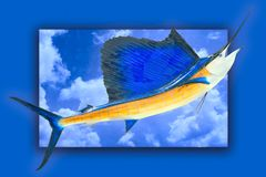 Sailfish trophy w/clip path Royalty Free Stock Photos