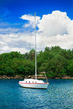 Sailfish yacht near scenic green island Royalty Free Stock Image