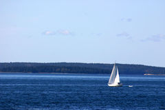 sailing залива открытый Стоковое Фото