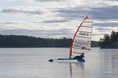 Sailing конька Стоковое Фото