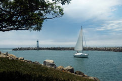 Sailing In. A sailboat sailing in to the marina. Santa Cruz, Ca stock images