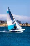 sailing кота Стоковая Фотография