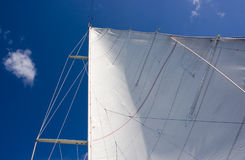 Sailing. A white sail with blue sky Stock Photos