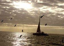 Sailing Royalty Free Stock Images