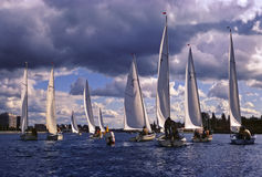 Sailing. Regatta.Yachts competing on a sunny and windy day under a blue but cloudy sky Royalty Free Stock Photography