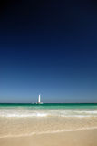 Sailing. A sailing boat on the horizon seen from a paradise beach. Dark blue saturated sky Stock Photography