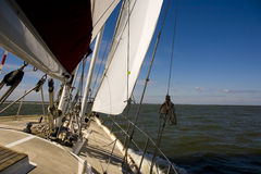 Sailing. On open water with blue sky Royalty Free Stock Images