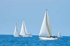 Sailing. Ships on summer regatta Royalty Free Stock Photos