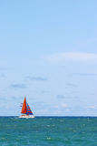 Sailing. A bright red sailboat in the vibrant ocean water Royalty Free Stock Image