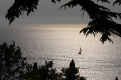 Sailing. Boat on a still sea bathed with late afternoon light Stock Photos