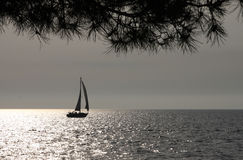 Sailing. Boat on a still sea bathed with late afternoon light Royalty Free Stock Photography