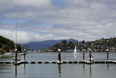 Sailing Angel Island Stock Image