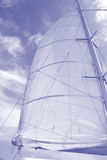 Sailing Background or stationery. A white sail and blue sky have been colorized blue and lightened for web page,background, or stationery use Royalty Free Stock Photo
