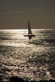 Sailing backlight Royalty Free Stock Photo