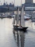 Sail boat Baltimore inner harbor. Sailing in Baltimore royalty free stock photos