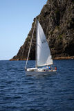 Sailing in the Bay of Islands,New Zealand Stock Photography